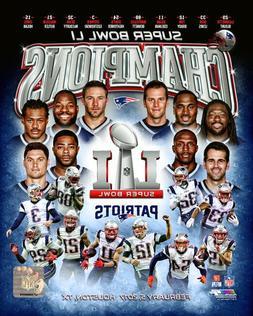 New England Patriots SUPER BOWL LI CHAMPIONSHIP 8X10 TEAM PH
