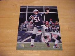 Tom Brady New England Patriots Action LICENSED 8X10 Photo  F